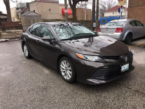 2018 Toyota Camry LE FWD  (2000 $ cash incentive)