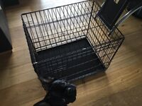 Ellie-Bo Dog Puppy Cage / Crate 24-inch Black