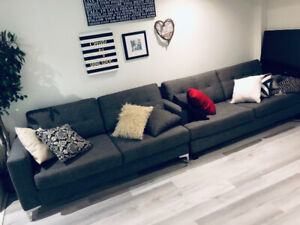 2 new grey couches