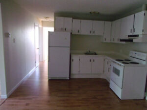 Two Bedroom Apartment For Rent 14 St. Phillips St. Bridgewater
