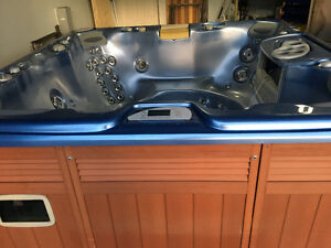 Beutiful fully loaded Sundance spa with stereo - free delivery