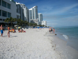 HOLLYWOOD - HALLANDALE OCEAN FRONT