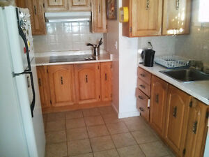 49A Grenfell Ave: 1 bdrm, 1.5 bathroom apartment, close to MUN
