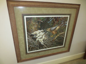 Robert Bateman Framed Limited Edition Prints