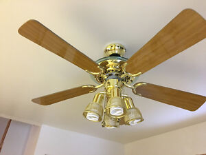 Ceiling Fan with lights in excellent working condition