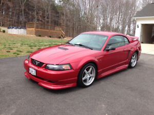 1990-2003 Ford Mustang GT or Mach 1 Coupe (2 door)