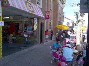 Profitable Marble Slab Creamery Franchise Oakville / Halton Region Toronto (GTA) image 8