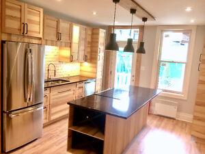2 Bed, 2 Bath, Renovated, Appliances, All Inclusive, Plateau