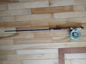 Fly Fishing Rod, Reel, Case and Line Pieroway