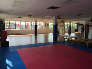 2000 sq/ft newly renovated space for rent !!