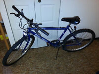 Supercycle Winterized Mountain bike in Excellent Condition