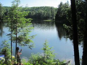 Beautiful waterfront lot (partially developed) - Marble Lake