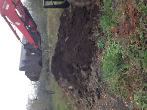 Composted Cow Manure