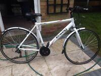 Apollo envoy bike