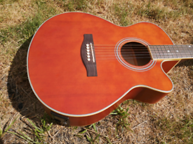 Electro Acoustic guitar to Swap