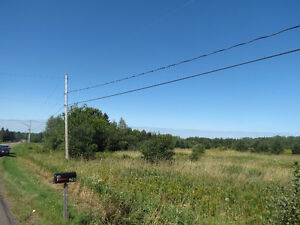 BIG Land for sale in St. Antoine Area