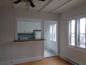 Cute Bright 4.5 for rent Downtown!