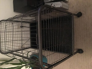 Guinea pig metal cage on wheels