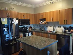 Kitchen cabinets + granite counter
