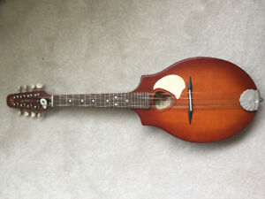 A beautiful Mandolin