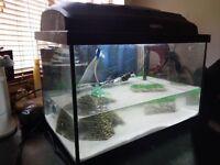 25L Aquael Classic Tank