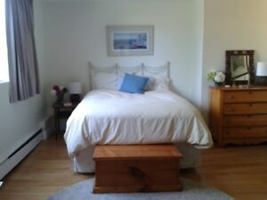 Bright, spaceous, FURNISHED 1-Bdrm South End FLEXIBLE TERM