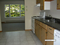 Bright & Sunny 3 BED in quiet 4-plex, 2 min to HWY/ New Hospital