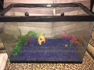 FISHTANK WITH ACCESORIES FOR SALE