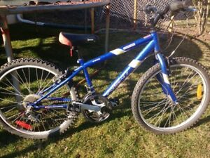 Youth Blue 24 inch 18 Speed Mountain Bike