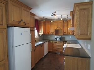 Third St Mount Pearl - Recently Renovated 3 Bedroom Avail Now