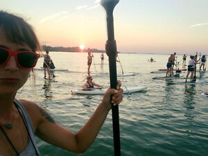Stand Up Paddle Boards (SUP)