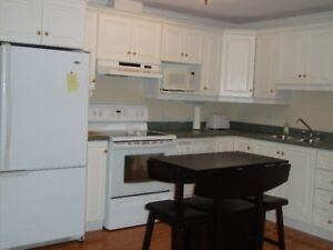 AVAILABLE JAN 1ST. FURNISHED & EQUIPPED EXECUTIVE DOWNTOWN CONDO