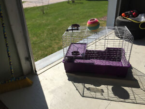 1 cage and accessories for smallish animals such as guinea pigs