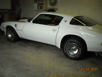 1981 Pontiac Trans Am Firebird Turbo Charged
