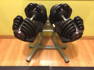 Bowflex 1090 Dumbbells, Adjustable Bench, Rogue Monster Bench