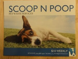 Pooper Scooper (Scoop N' Poop)