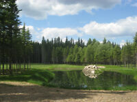 4 Fully Serviced Lake Lots - Candle Lake - Unreserved Auction