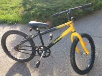Vincent single speed mountain bike