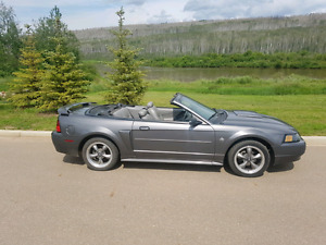 2004 mustang gt 40th anniversary convertible automatic