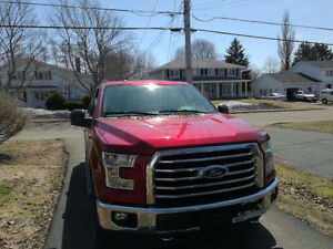 2015 Ford F-150 may.10./2015 Pickup Truck
