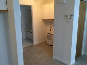 Premier mois gratuit - Appartement 3 1/2 Saguenay Saguenay-Lac-Saint-Jean image 4