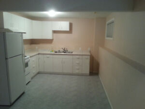 High ceilng basement suite in bi-level house. 2 bedroom,