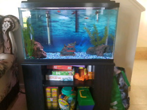30 fish tank with stand