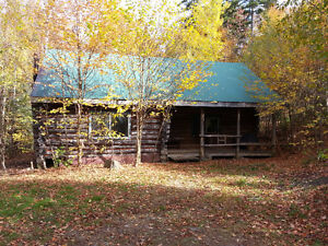 Rustic Log Chalets in Salt Springs, Beautiful Forest Setting.