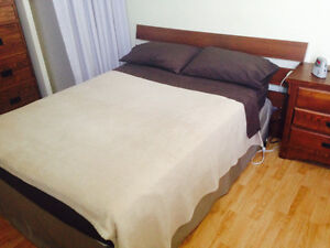 Great Furnished Room