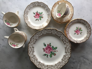 Vintage Fine Bone China dinnerware set - Georgian, Briar Rose