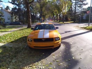 2008 Mustang (only 89,000 km's) - Great Shape