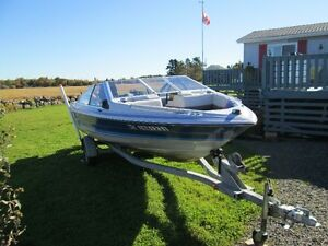 17 Ft Bowrider for sale