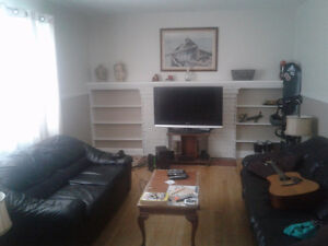 Bright single room OR bachelor basement for rent 400/MTH all inc