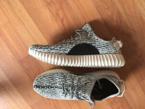 Yeezy Boost Turtle Dove Size 10